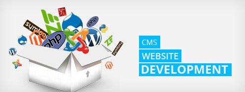 cms-website-development