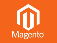 Looking for looking for data entry services for Magento Store